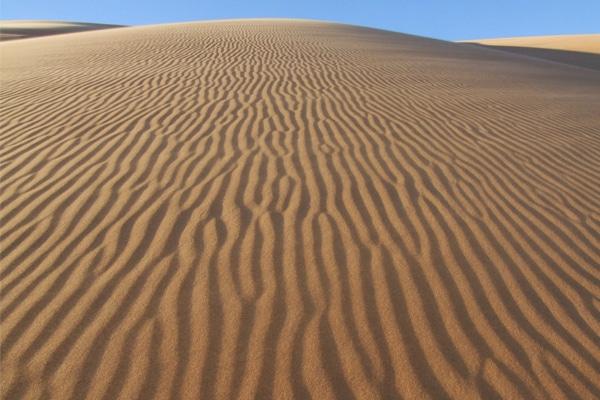 Dunes Amatlich