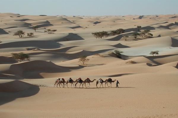 Meharee Mauritanie