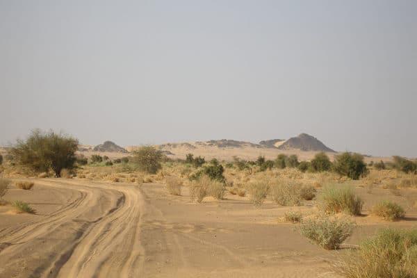 Sur la piste de Ben Amira