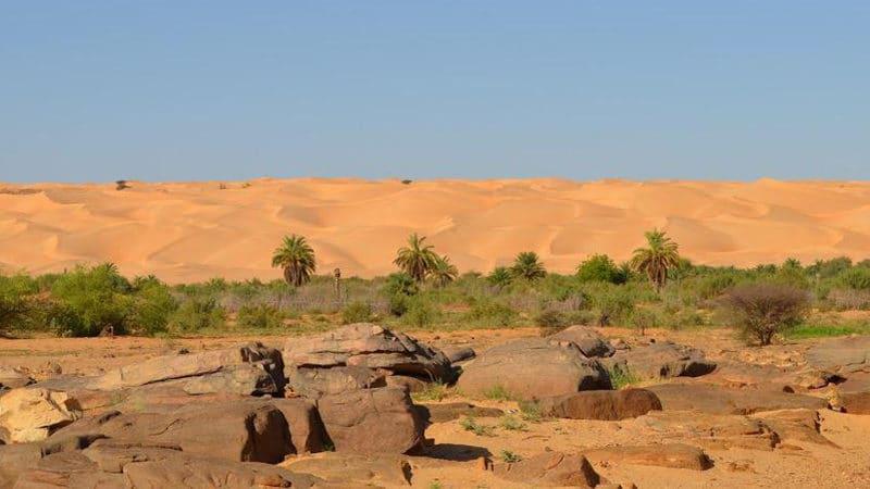 Le village pilote de Pierre Rabhi en mauritanie: Maaden El Ervane