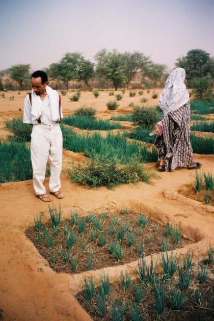 Pierre Rabhi au Burkina Faso