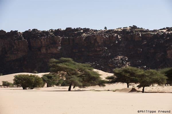 Oued El Abiod