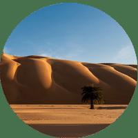 Bulles-desert-amatlich