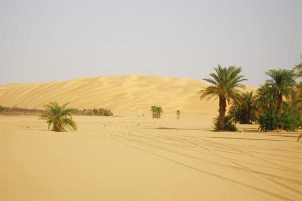 Dunes de l'erg Ouarane - Adrar mauritanien