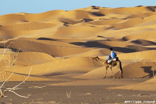 Méharée dunes Tagant