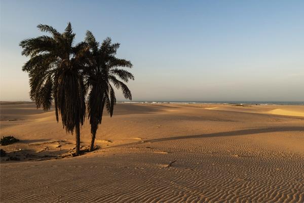 Dunes Parc du Diawling