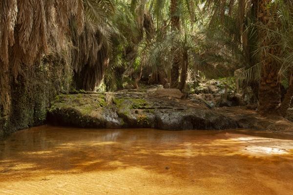Guelta Tagant