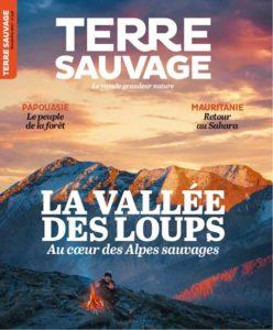 Terre Sauvage: Mauritanie, retour dans le Sahara