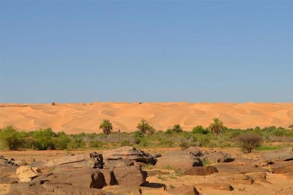 Maaden accrochée aux Dunes