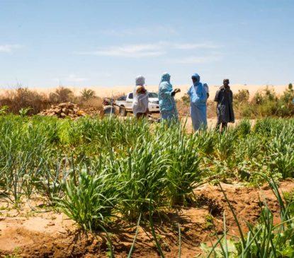 sejour agroécologie Maaden