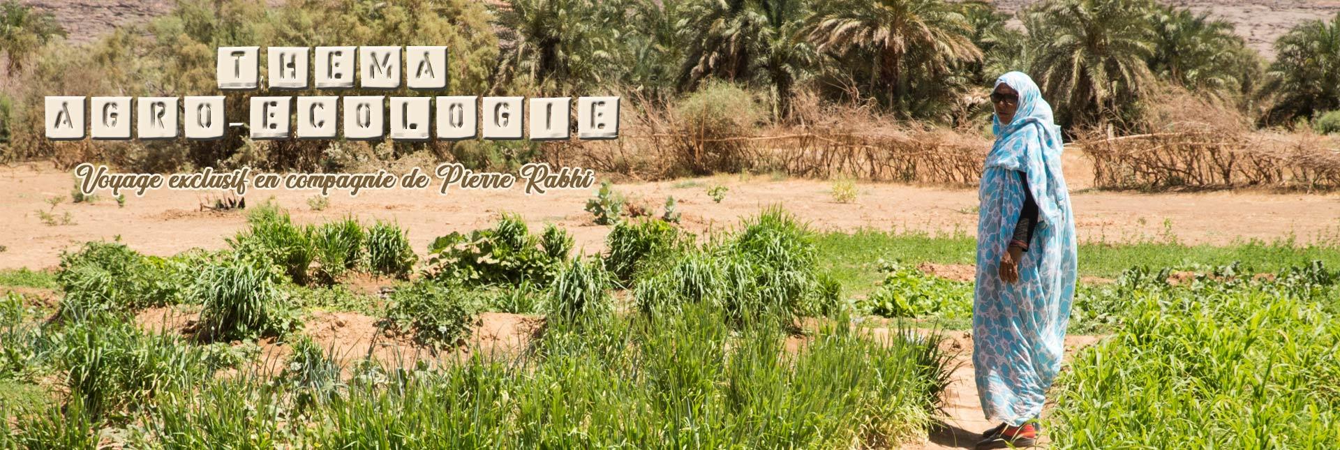 Théma agroécologie à Maaden avec Pierre Rabhi