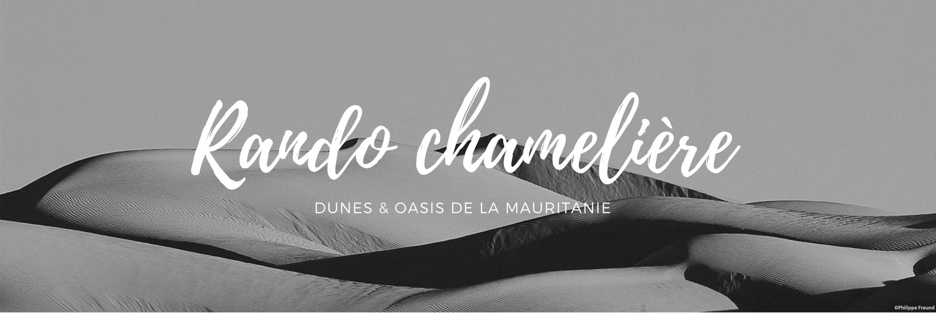 Rando chamelière en mauritanie