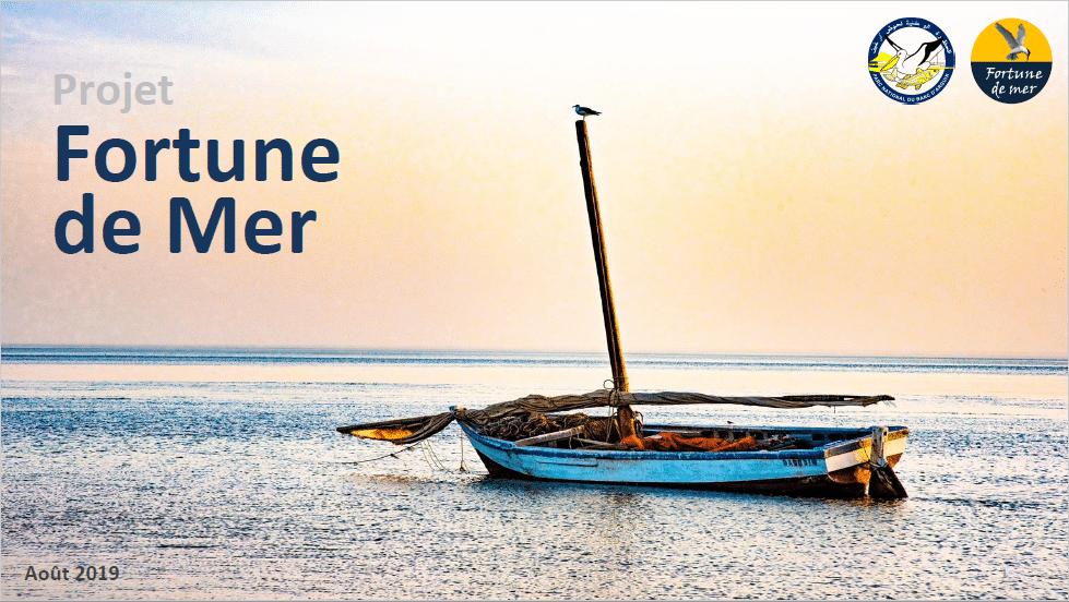 Projet fortune de mer dans le banc d'Arguin