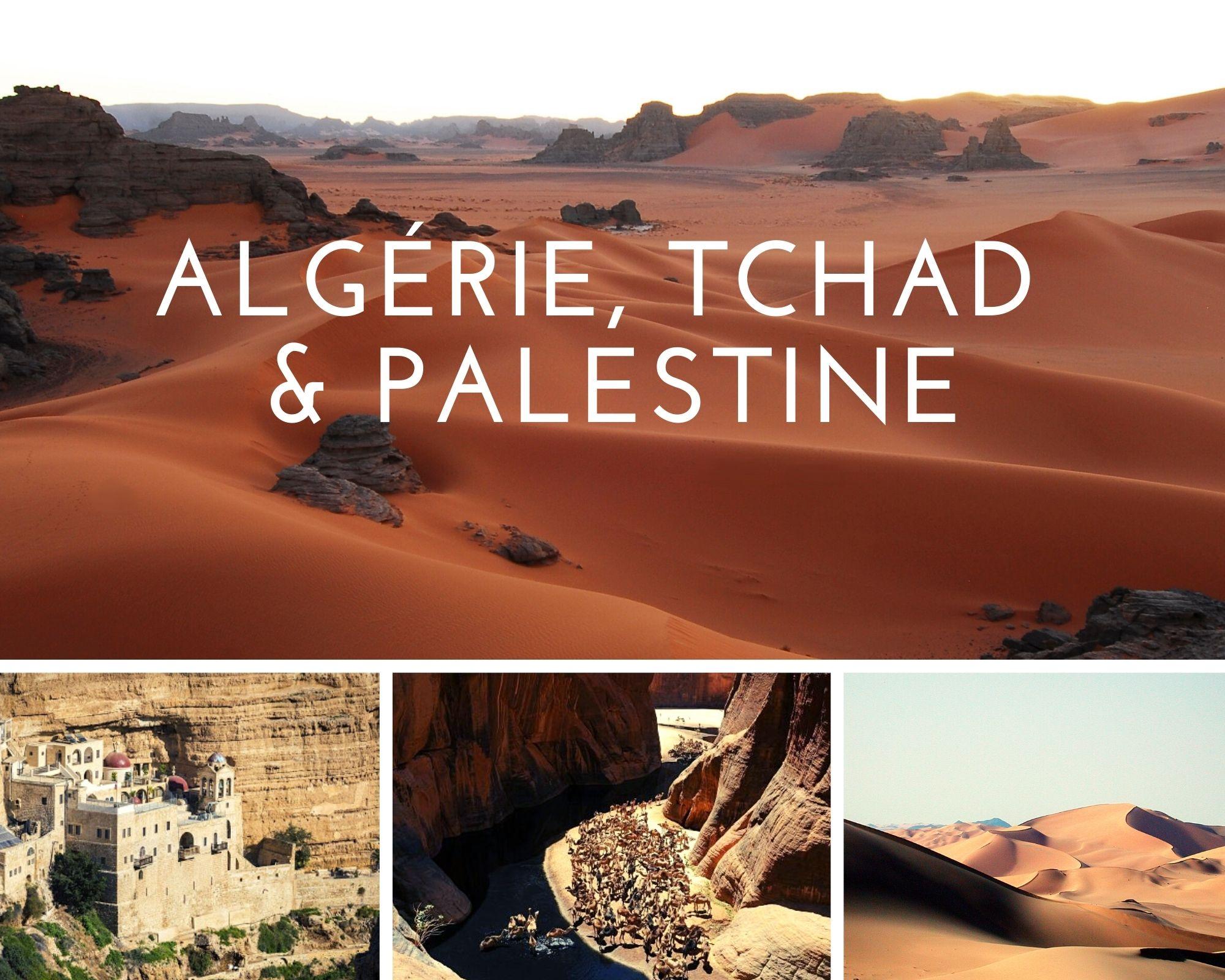 Header Algerie, tchad et palestine
